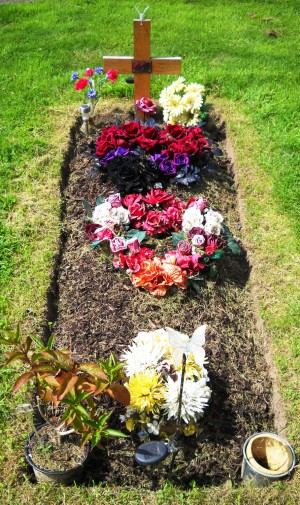 New Grave With Flowers Spread Over The Mound Stock Photo, Royalty ...